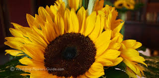 wedding flowers sunflowers real weddings s sunflower wedding fowers