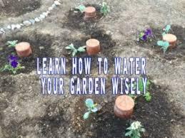 Gardening Tips For Summer - prep blog review gardening tips for summer prepper u0027s survival