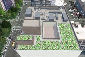 green roofs growing at fit on my mind
