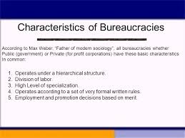 chapter 16 the bureaucracy ppt video online download