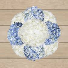 Bulk Hydrangeas Hydrangeas Bulk Flowers Costco