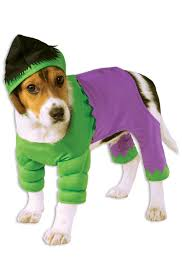 pet costume halloween incredible hulk pet costume purecostumes com