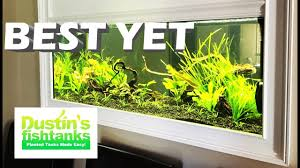 Aquascape Shop How To Setup Up A Planted Aquarium Aquascape My Best Aquascape