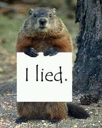 33 groundhog activities images groundhog