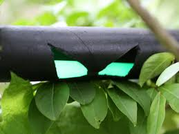 how to make halloween spooky eyes to hide in the bushes how tos
