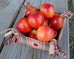ediable fruit crabapple apple trees stark bro s