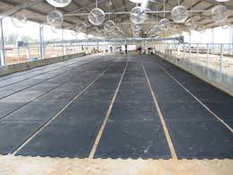 interlock rubber flooring system rubber mats animat