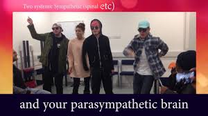Anatomy And Physiology Songs The Autonomic Nervous System Song Youtube