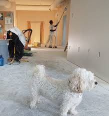 painting kitchen cabinets how many coats of primer how many coats of primer for any situation you ll like the