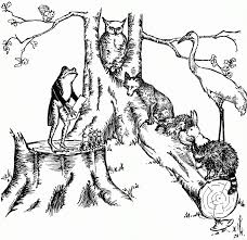free coloring pages of woodland forest animals woodland animals