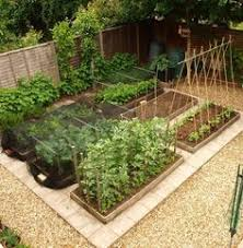 Vegetable Garden Landscaping Ideas Vegetable Garden Layout For Small Spaces What Will Grow