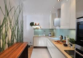 ton cuisine personnalisé couleur pour cuisine 105 idées de peinture murale et façade