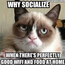 Grumpy Cat Meme No - this grumpy cat meme excels because it plays with the declarative
