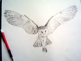 Patterned Flying Owl Drawing Illustration Owl Drawings Barn Owl Render By Tophoid On Deviantart Me