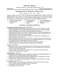 It Professional Sample Resume by Resume Example 47 Professional Summary Examples Professional