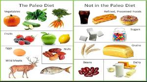 top diet foods atkin diet food list