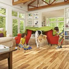 Maple Laminate Flooring 7 Best Floors Images On Pinterest Maple Laminate Flooring Maple