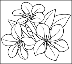 flower printable coloring sheets tropical flower coloring