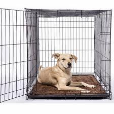 boxer dog doormat dirty dog doormat runner nano brown
