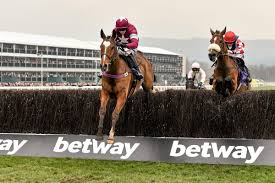 lexus chase wiki cheltenham festival 2017 u2013 don poli ruled out of the cheltenham