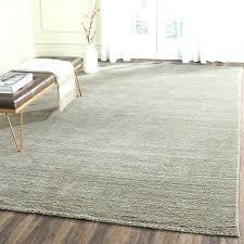 Target Area Rug Target Carpet Runner Ezpass Club