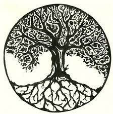celtic tree of drawing grey celtic tree of with rocks
