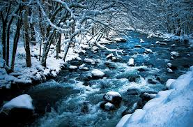 photographers in grand rapids mi winter photography grand rapids michigan photography