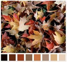 paint colors from chip it by sherwin williams color palettes