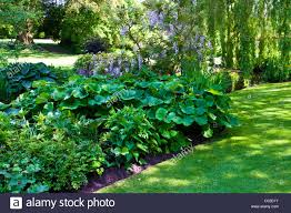 banks of ornamental garden pond in an country garden with