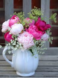 peonies flower peonies posiesindulging floral passions