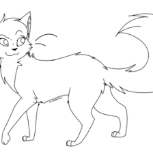 warrior cats coloring kids drawing coloring pages