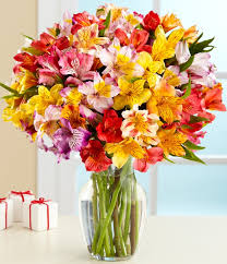 cheap flowers to send efficient send cheap flowers florist cheapest