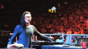 Skrillex Bee Meme - skrillex with a bee dubstep know your meme
