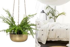 interior trends forecast for 2016 life style your way bring interior trends forecast for 2016 life style your way bring outdoors inside with hanging plants and bedroom