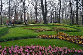 tiptoe through the tulips how to experience amsterdam in bloom