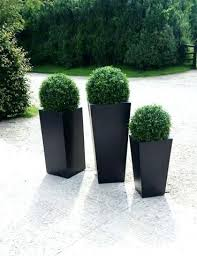 topiary trees faux outdoor topiary image 1 outdoor topiary trees ibbc club