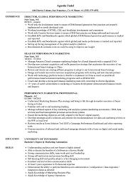performance marketing resume samples velvet jobs