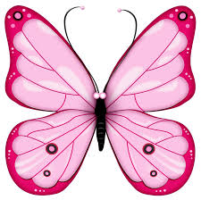 butterfly pink pastel simple clipart cliparts and others art