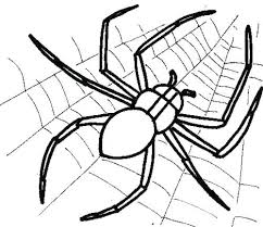 Spider Web Coloring Pages To Print And Page Cute Thaypiniphone Spider Web Coloring Page
