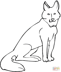 coyote coloring page free printable coloring pages