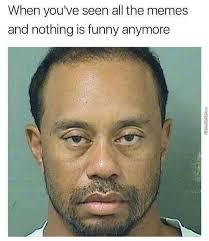 Tiger Woods Meme - tiger woods memes best collection of funny tiger woods pictures