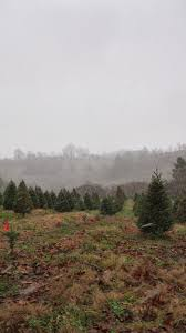 lee county virginia christmas in appalachia december 2013 events