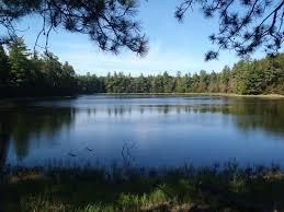 Michigan Dnr Lake Maps by Trout Trails Website Helps Pinpoint Successful Spots Mlive Com