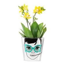 Indoor Plant Vases Indoor Planters You U0027ll Love Wayfair