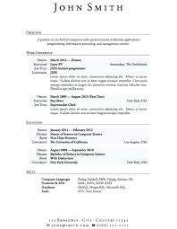experienced professional resume template business argumentative essay topics essay research paper with