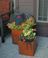 Plant Combination Ideas For Container Gardens - stylish shady containers fine gardening