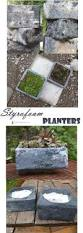Diy Garden Planters by 394 Best Containers For Succulents Images On Pinterest