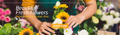 Local Florist Frugal Flower Is Your Local Florist For Flowers Online