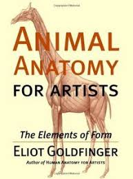 Human Anatomy Textbook Pdf Download Animal Anatomy For Artists The Elements Of Form Ebook