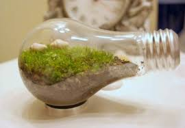 diy 10 amazing homemade terrariums that make perfect holiday